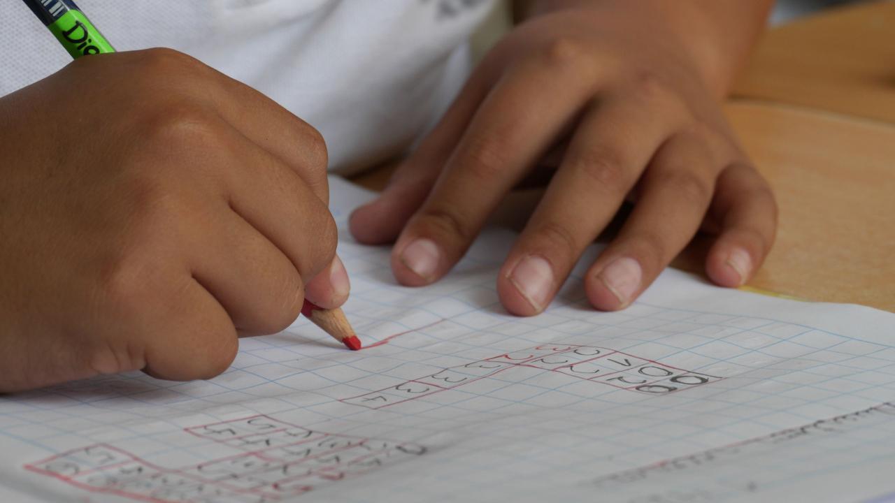 Per què les nenes pateixen més ansietat per les mates? / ¿Por qué las niñas sufren más ansiedad por las mates?