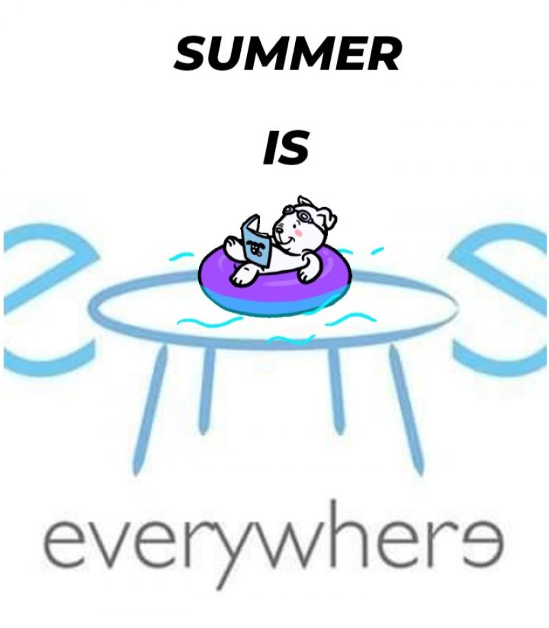 SUMMER IS EVERYWHERE