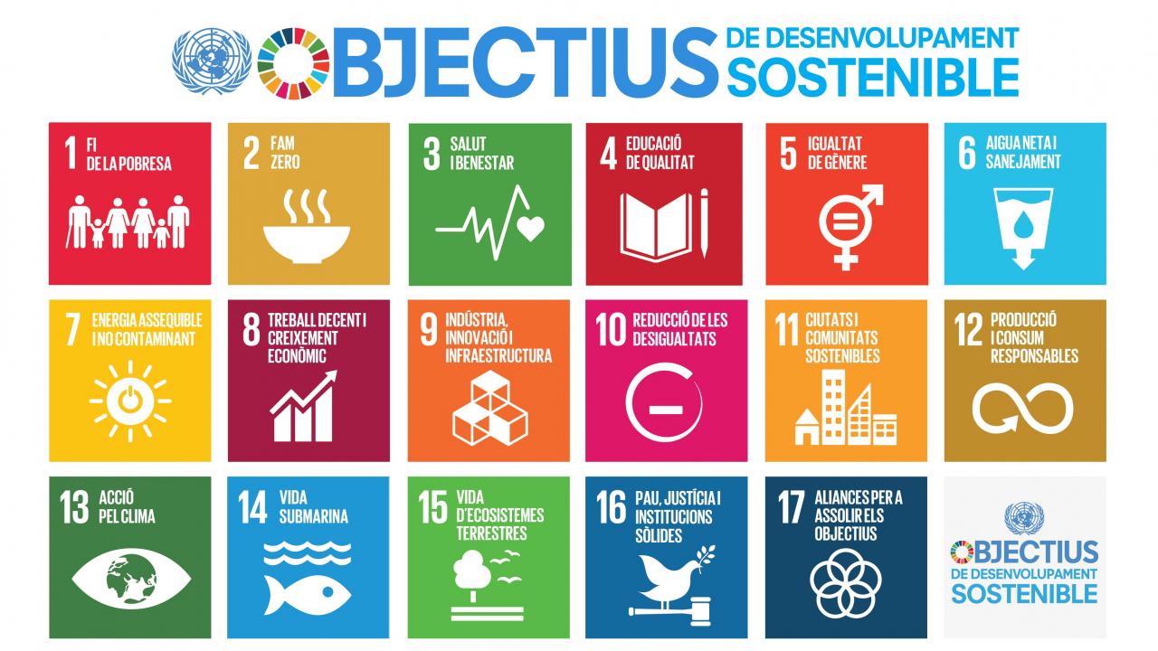 Avui, Dia Mundial d'Acció pels ODS, reafirmem el nostre compromís per contribuir al compliment dels ODS4, ODS5, ODS10 i ODS17.