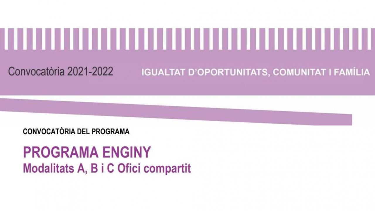 PARTICIPACIÓ EN PROJECTES - 1. Programa ENGINY