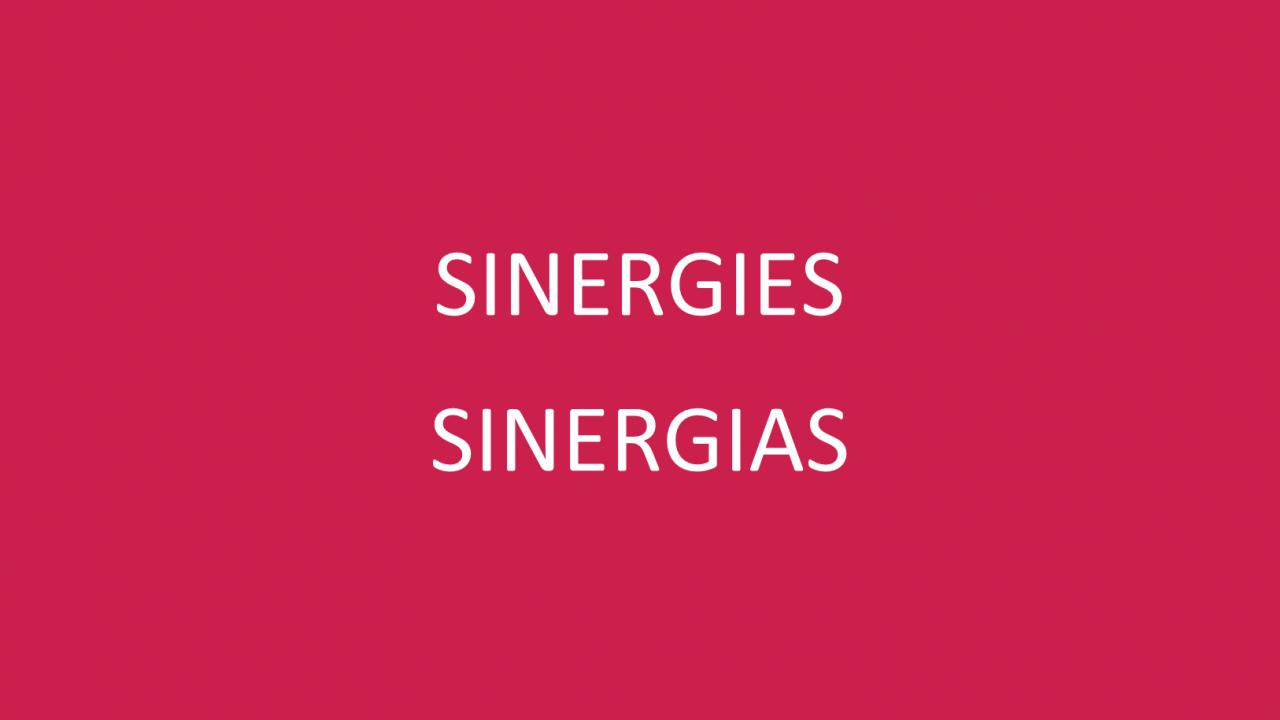 """SINERGIAS"""""""